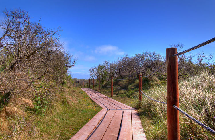 Blue Sky And Clouds Sony Photography Light And Shadows Dune Dune Grass Spring Is Coming  Spring Colours Spring2016 Colorful Nature Spring Time Helgoland Lines And Shapes Outdoors Park Travel Time!!! Hdr_europeTree Urlaub Way Of Life Springtime Spring 2016 Way To Go Way To Go Home