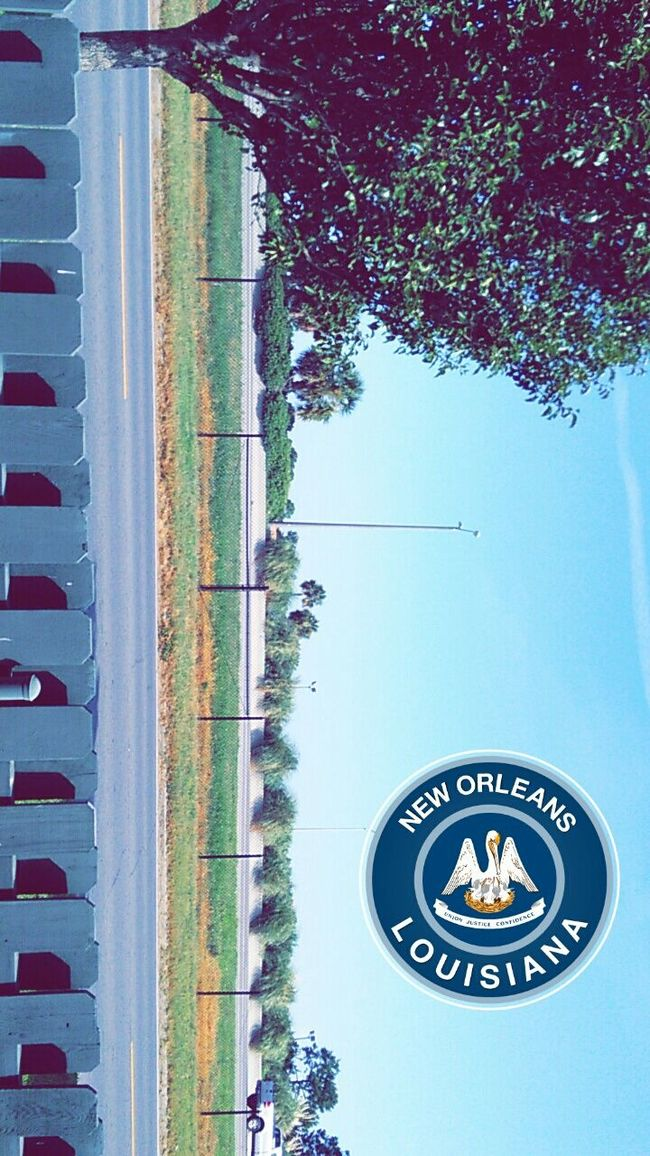 Nature On Your Doorstep Snapchat Original Vacation New Orleans Scenery