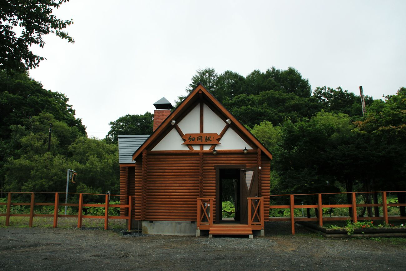 細岡駅です。ここにはいつもエゾシカがいます。今日もいました。 Hokkaido Marsh Station Nature_collection