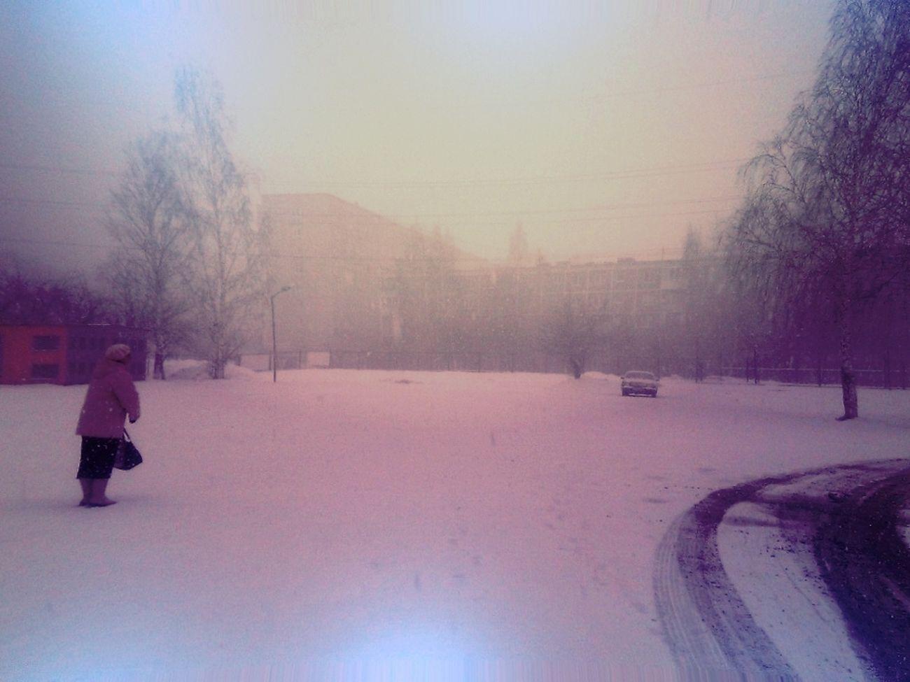 по самые уши в снегу