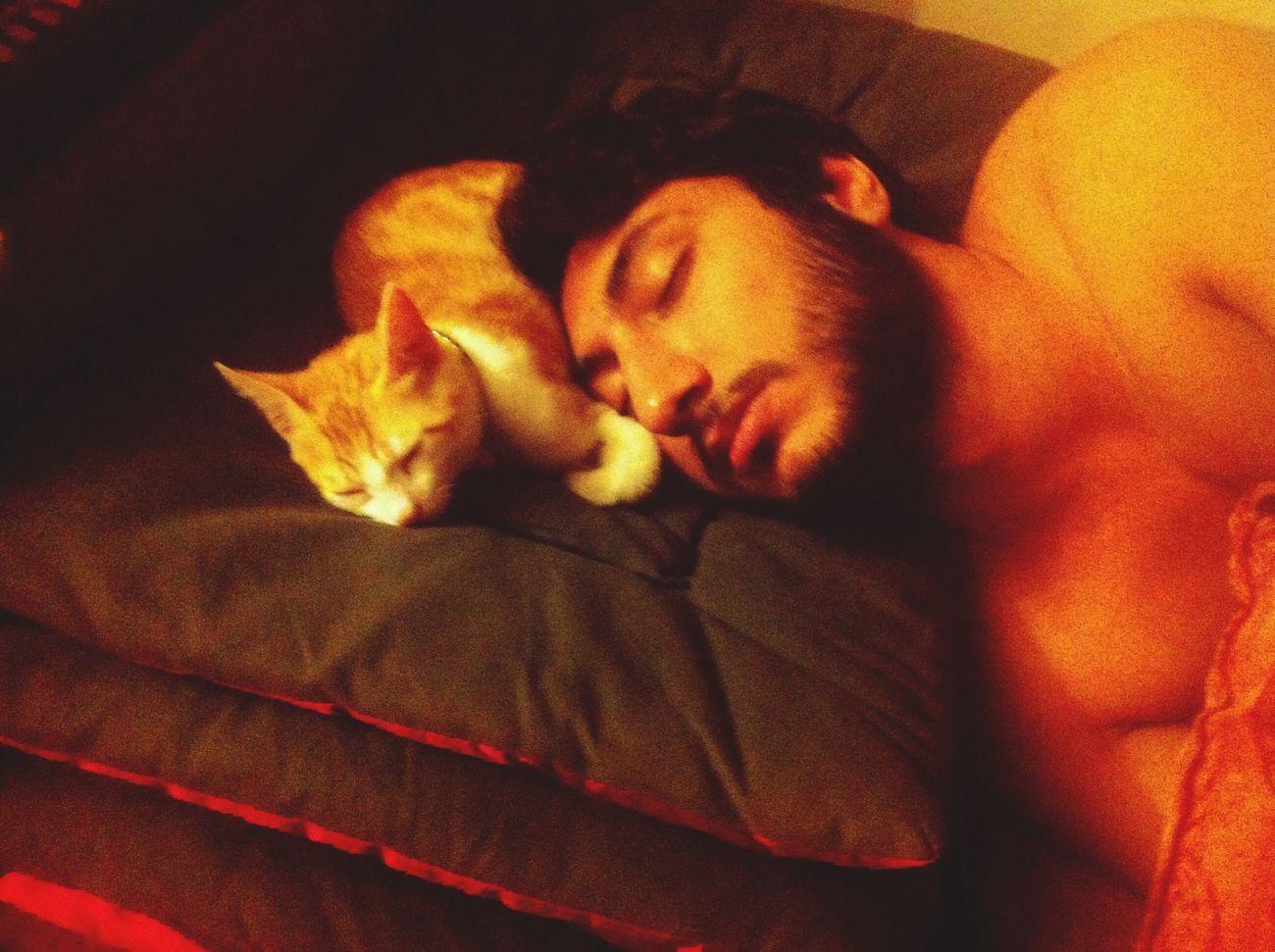 First Eyeem Photo Cat Malove <3 Sleeping