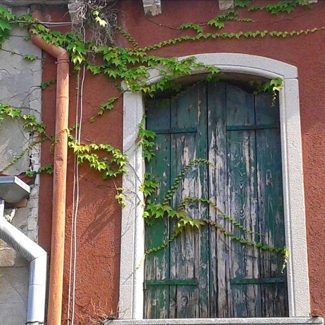 Igersvenezia Igersoftheday Igersitalia Veneziadavivere Venezia Venice Naturelovers Viteamericana City Window Finestra Lovevenice