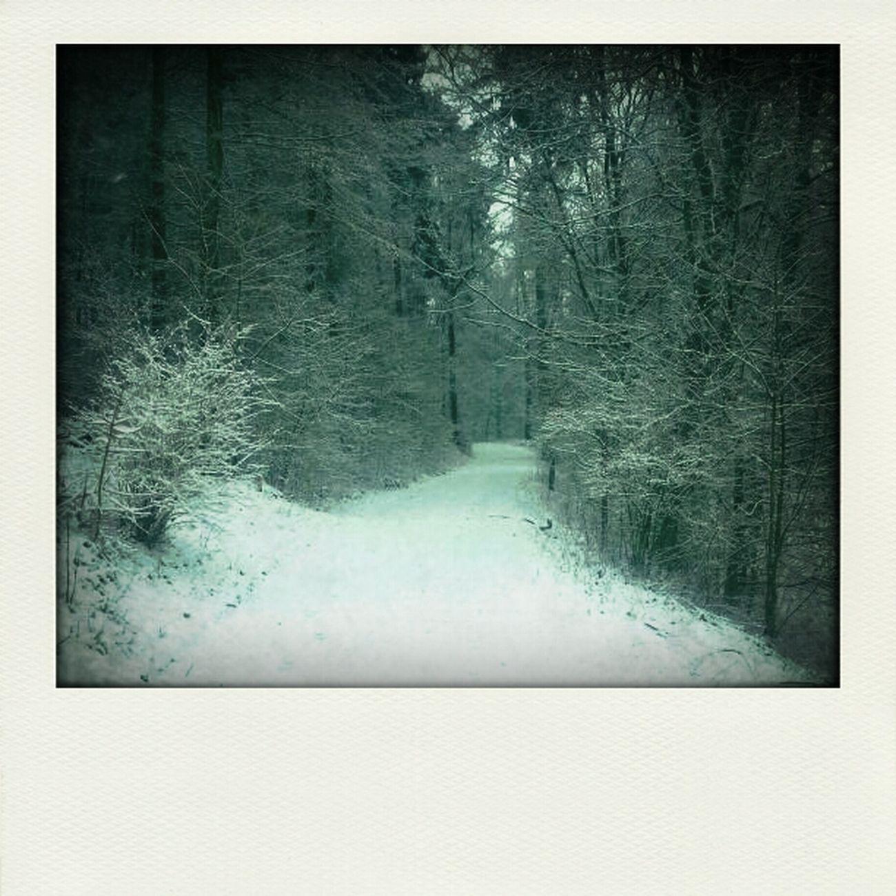 My Jogging Way :-P