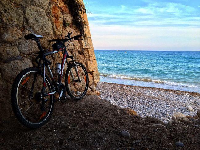Bicicleta Sea Deporte Playa