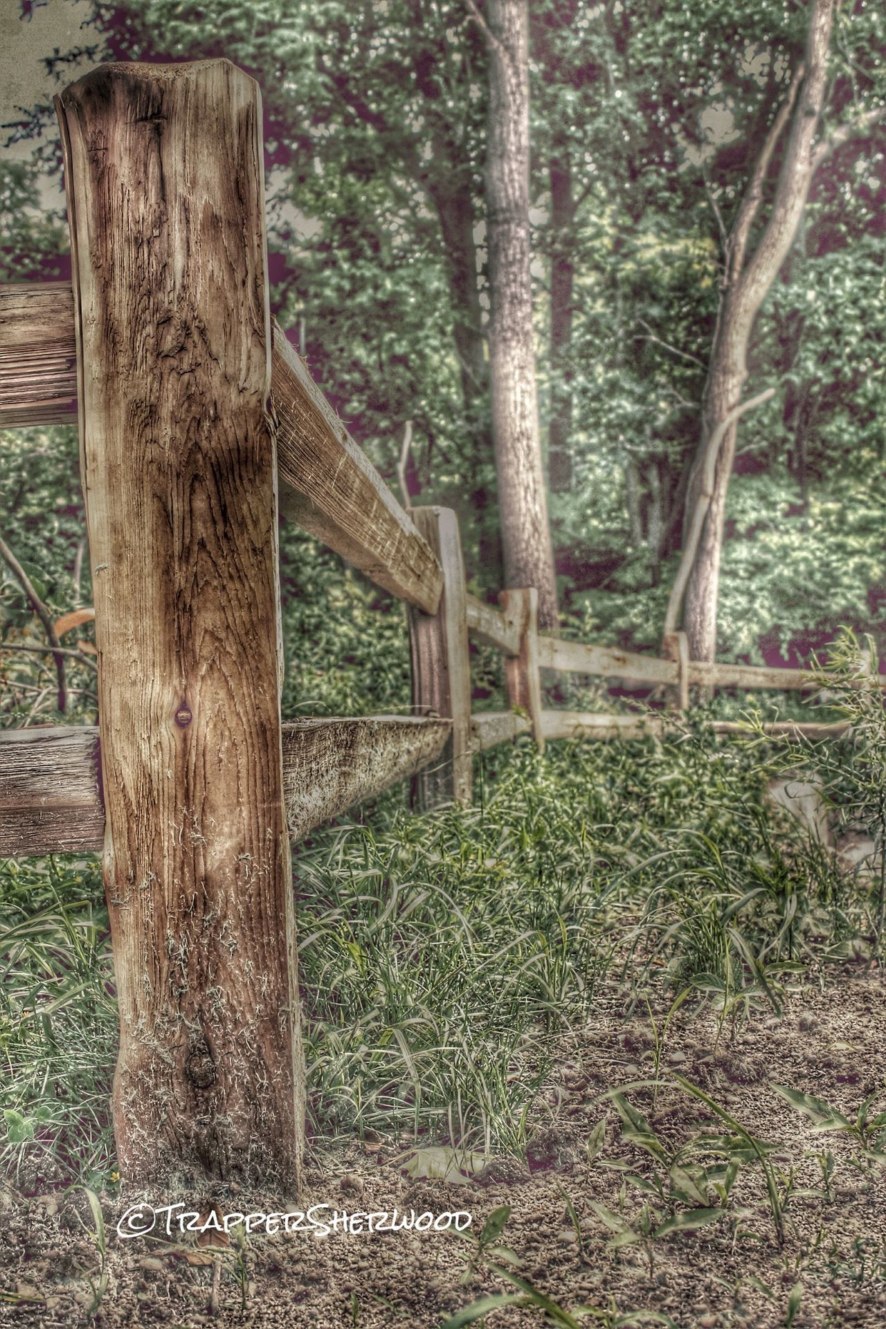 HDR Collection TGI Fence Post Friday Nature_collection From My Point Of View