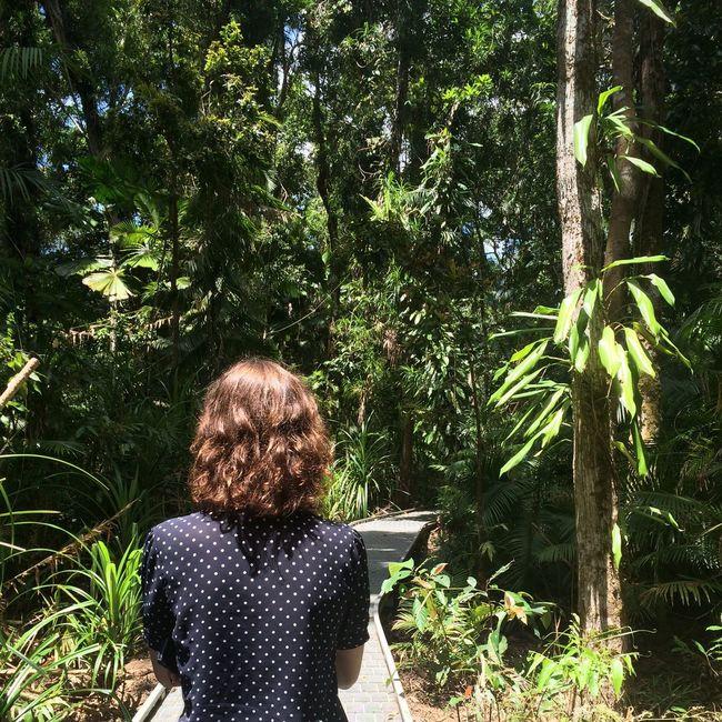Exploring Rainforest Nature