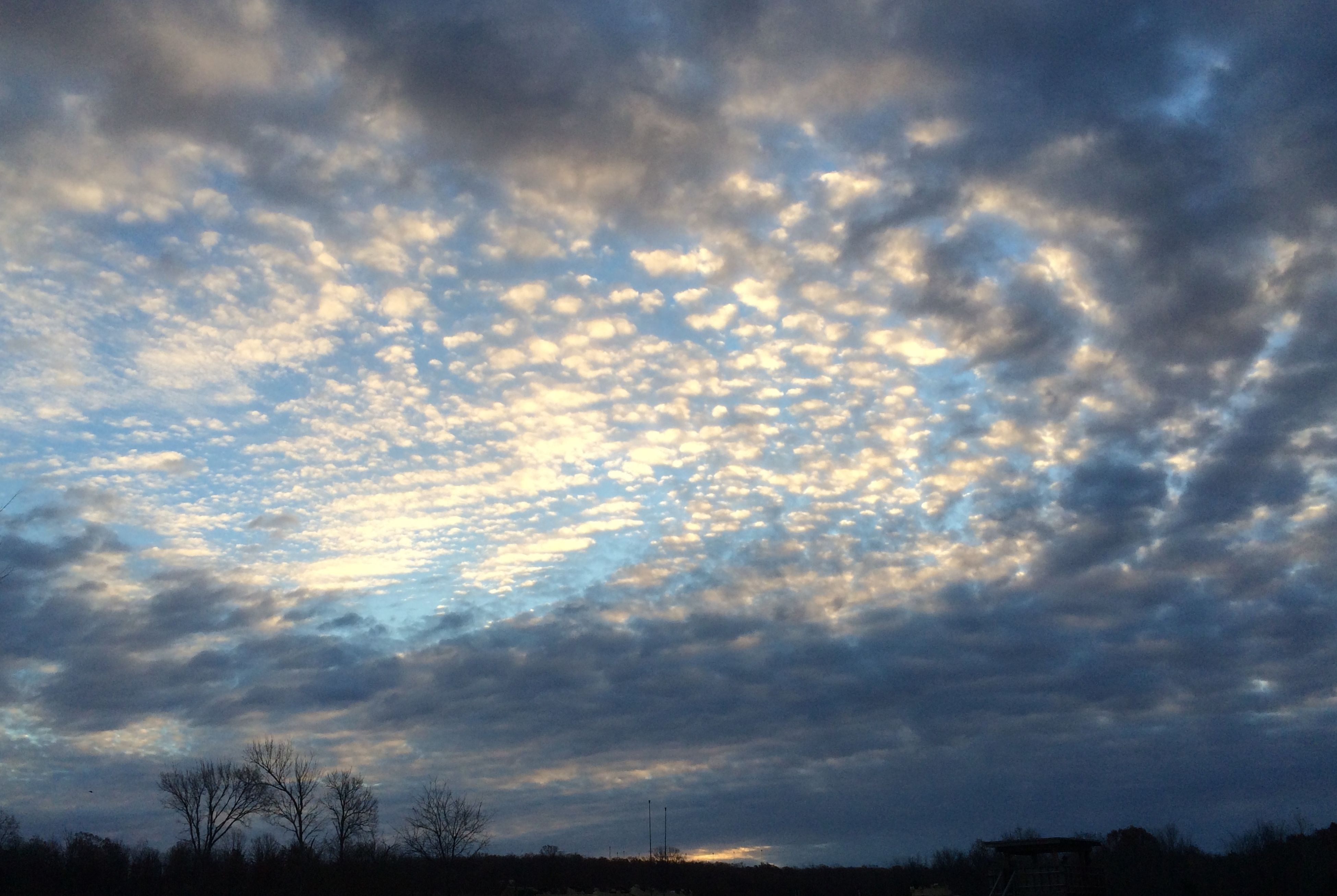 sky, silhouette, low angle view, cloud - sky, tranquility, beauty in nature, cloudy, scenics, tranquil scene, nature, sunset, cloud, tree, weather, overcast, dramatic sky, cloudscape, dusk, idyllic, outdoors