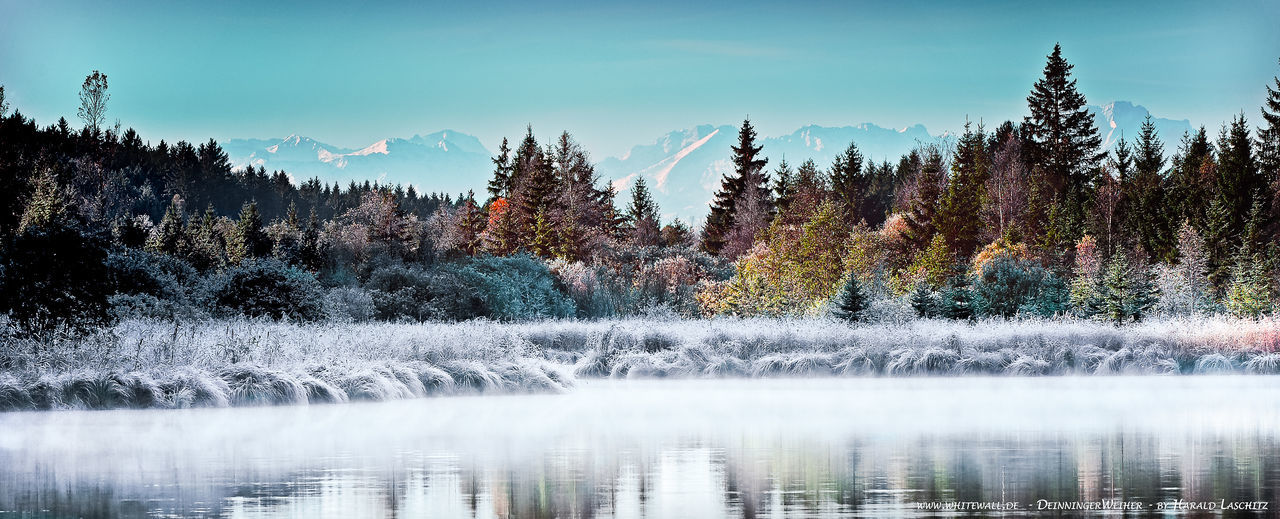 Cold Cold Temperature Covering Frozen Landscape Majestic Mountain Mountain Range Nature Scenics Season  Snow Snowcapped Tranquil Scene Tranquility Tree Weather Winter Deininger Weiher