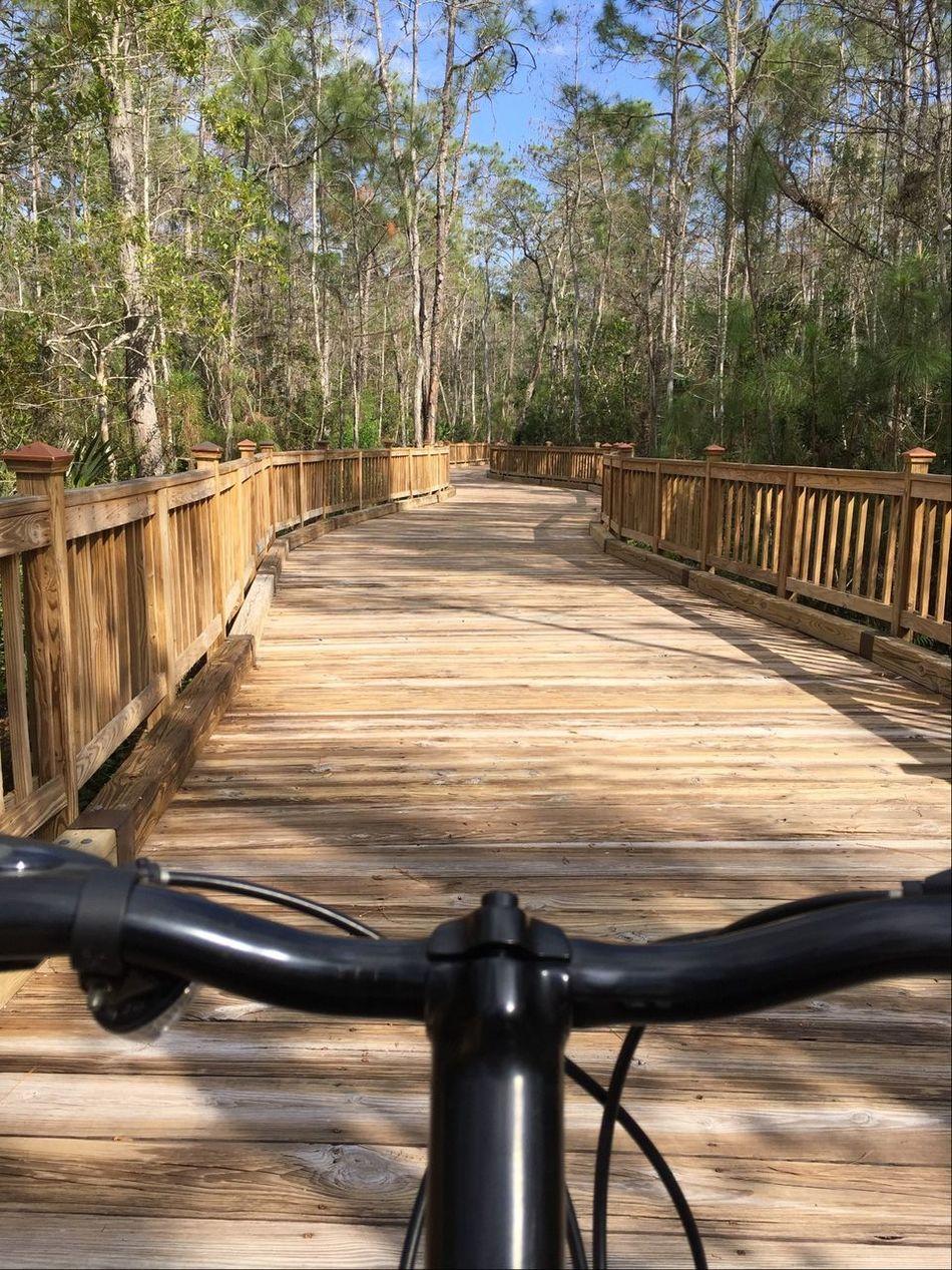 The Places I've Been Today Biking the boardwalk. Tadaa Community Florida Biking