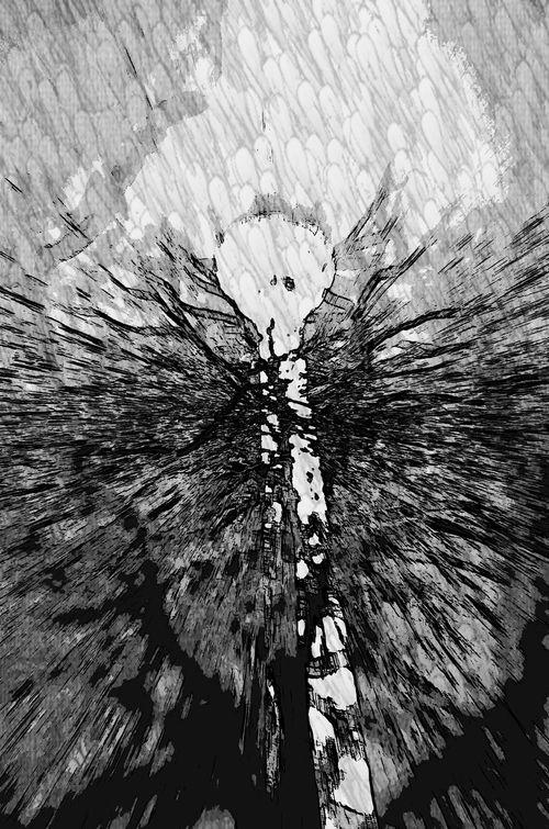 Berlin Fernsehturm Close-up Tree Berlin Photography Outdoors Best Of EyeEm Betonporn Modern Abstract Bnw Bnw_friday_eyeemchallenge Nightphotography Black & White Noir Et Blanc Façade Built Structure Architecture