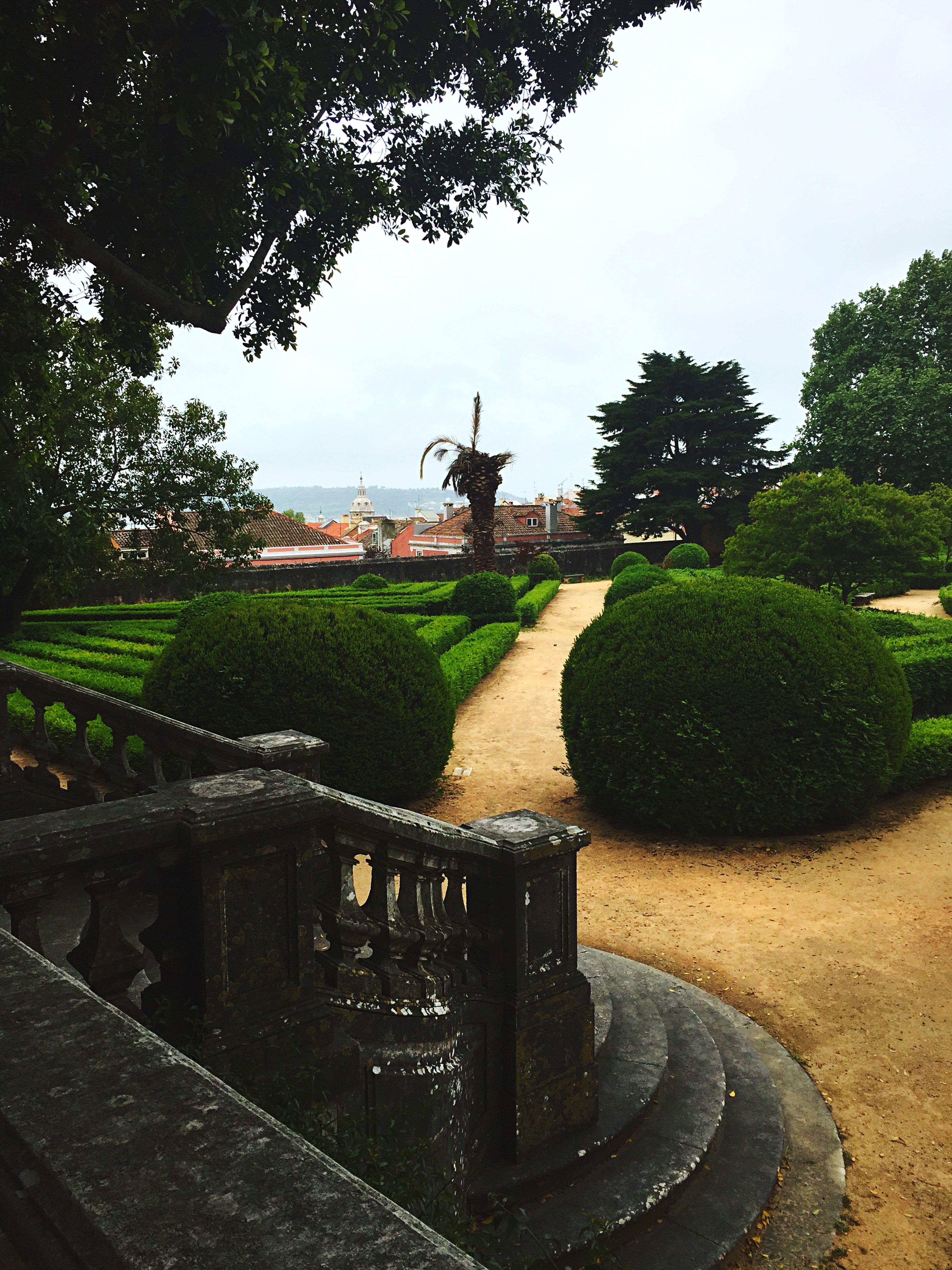 Botanical Gardens Green Beautiful