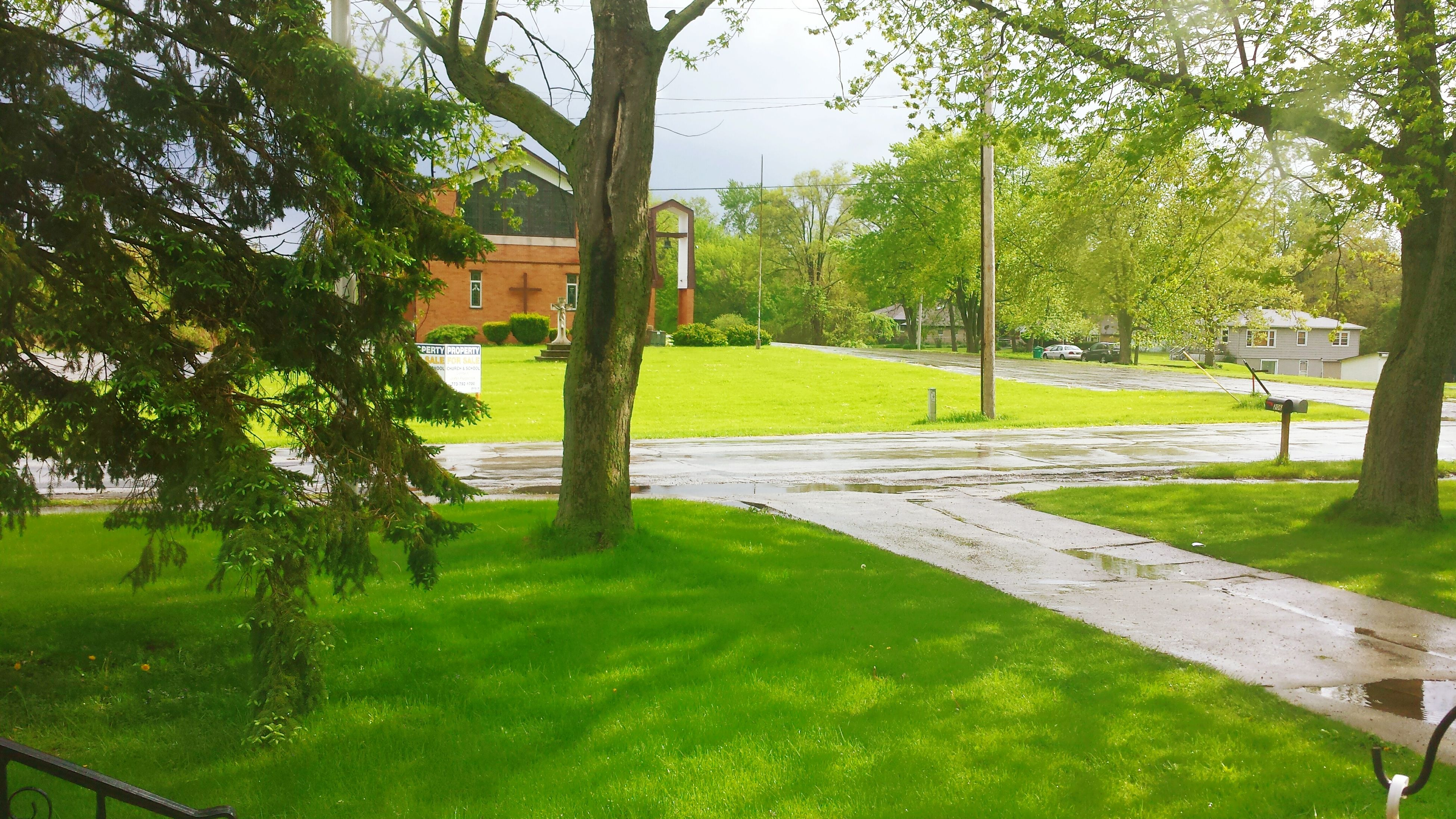 tree, grass, green color, building exterior, built structure, architecture, growth, lawn, park - man made space, tree trunk, sunlight, nature, shadow, footpath, tranquility, branch, day, park, road, field
