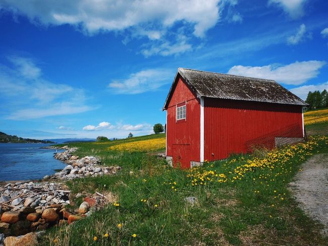The Essence Of Summer Visitnorway Norway Naturelovers Enjoying Life Nature Photography Rural Landscape Rural Norway Rural Scene