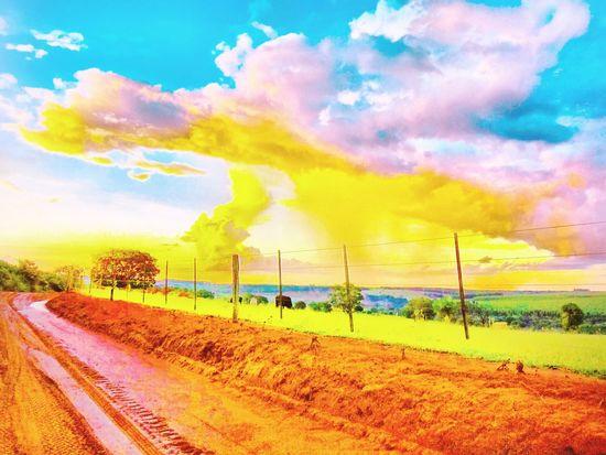 Lemon By Motorola Check This Out Hello World Avare Now® Avare SP BRASIL 🇧🇷☀️ Sunset #sun #clouds #skylovers #sky #nature #beautifulinnature #naturalbeauty #photography #landscape Special👌shot Avare Heaven Avare
