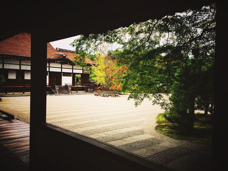 仁和寺 仁和寺御殿 南庭 京都 Kyoto Kyoto, Japan Kyototravel Enjoying Life Hello World Relaxing Japanese Garden Kyoto Garden 2015