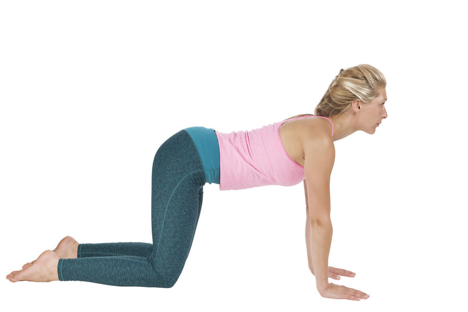 Side full body view of a young blond woman in the Yoga exercise Majariasana (the cat) with the back straight forward looking on a white background. Adult Adults Only Exercising Flexibility Full Length Healthy Lifestyle Lifestyles Majariasana One Person One Woman Only One Young Woman Only Only Women People Sport Sports Clothing Studio Shot White Background Young Adult
