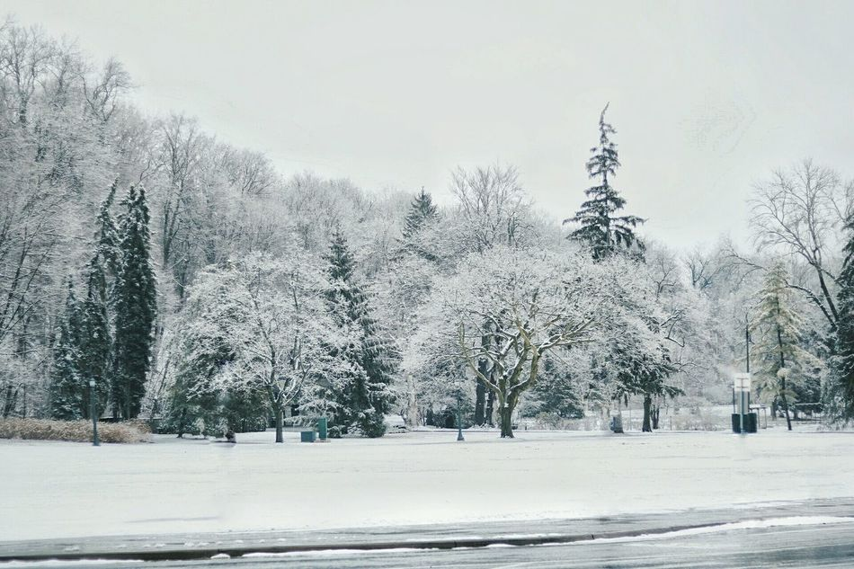 Snow Cold Temperature Winter Landscape Travel Tourism Torontophotographer Toronto Canada Torontophotography Niagara Falls
