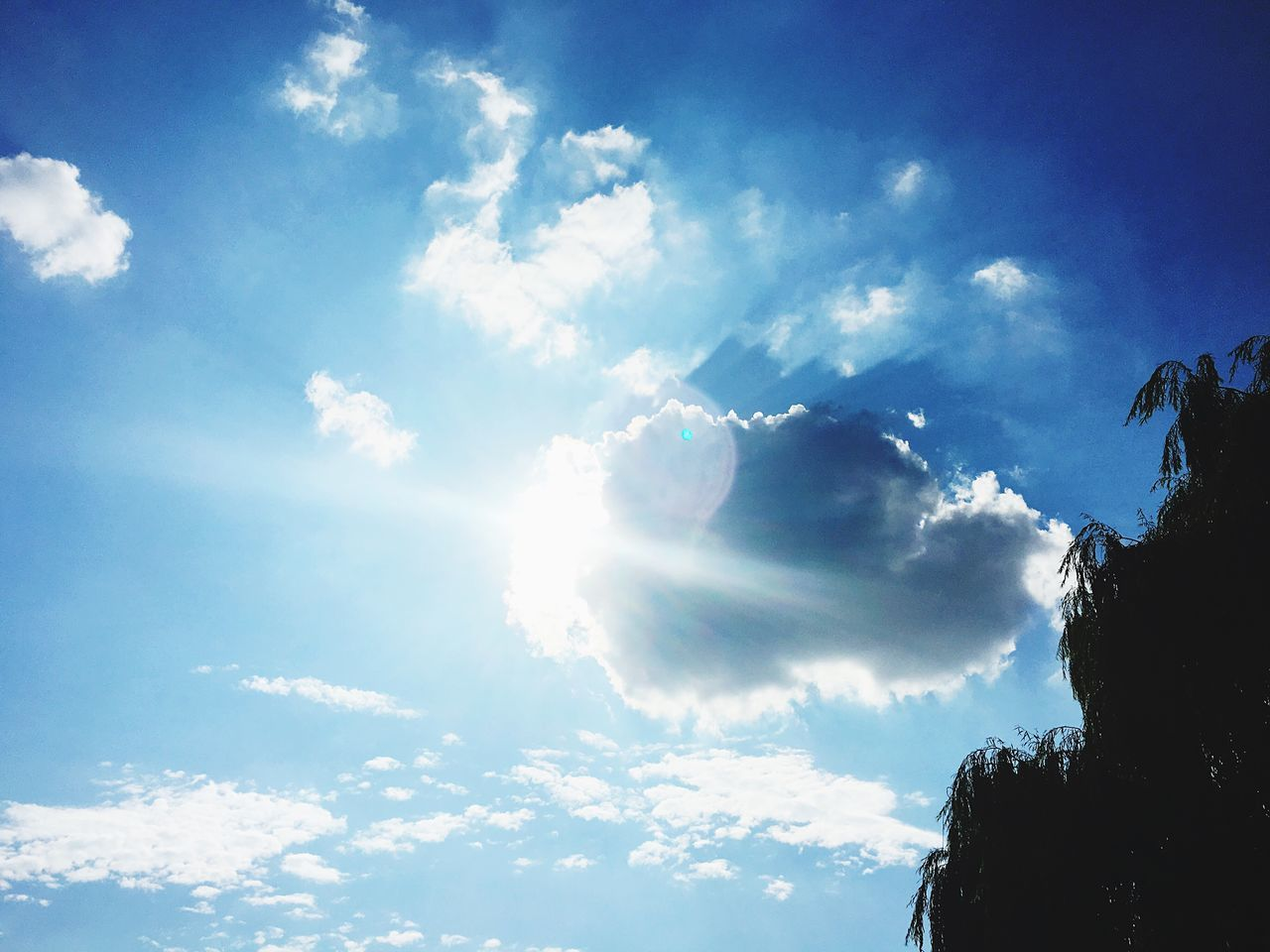 A wonderful day at the park. Awsomenature Wonderful Sky Awsome Day ♥ Beautiful Day Sunlight Sun Park Colour Of Life