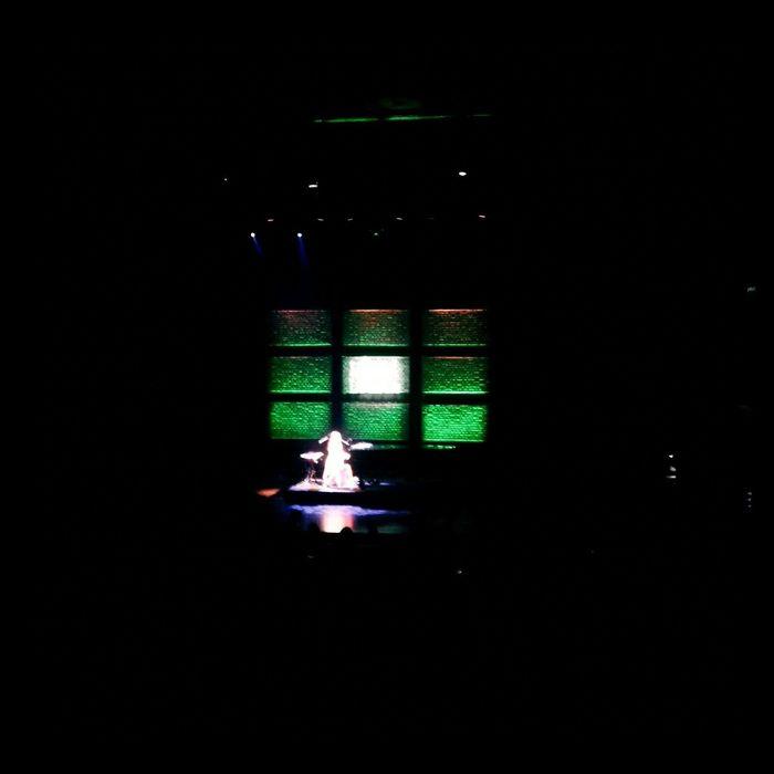 Lizard lounge! Tori Amos