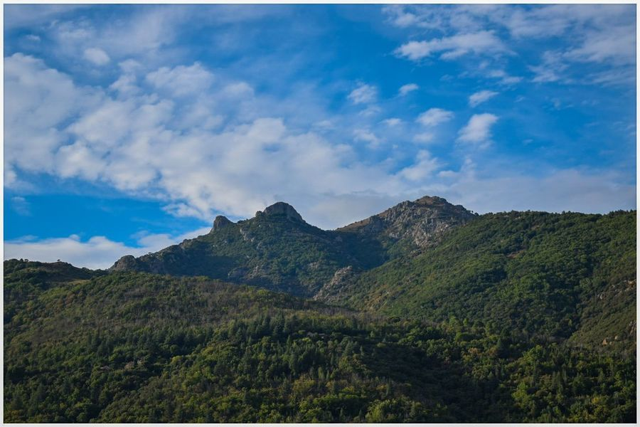 Mountain Sky Tree Nature Pinaceae Cloud - Sky Landscape Scenics Pine Tree No People Blue Outdoors Plant Forest Beauty In Nature Day Grass Montcaroux Beauty In Nature Tranquility Olargues Occitanie Village France🇫🇷 Unclicheunclindoeil Lost In The Landscape