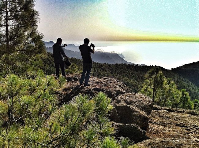 Friends Gran Canaria Canary Islands Islas Canarias The Tourist Feel The Journey