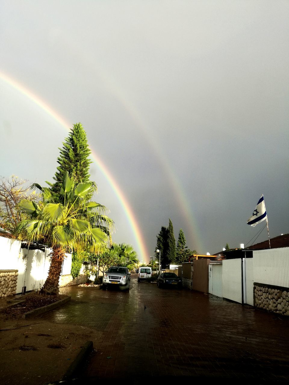 rainbow, double rainbow, weather, nature, beauty in nature, no people, tree, palm tree, built structure, scenics, outdoors, water, architecture, day, sky, building exterior