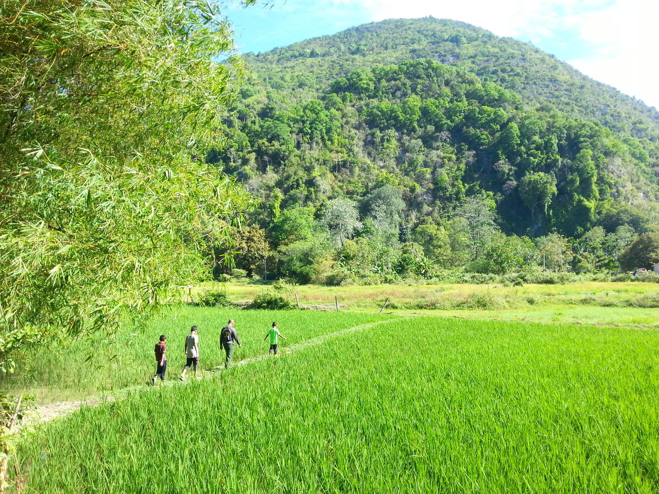 growth, field, green color, grass, nature, real people, agriculture, day, mountain, landscape, men, scenics, beauty in nature, outdoors, women, tree, togetherness, sky, people