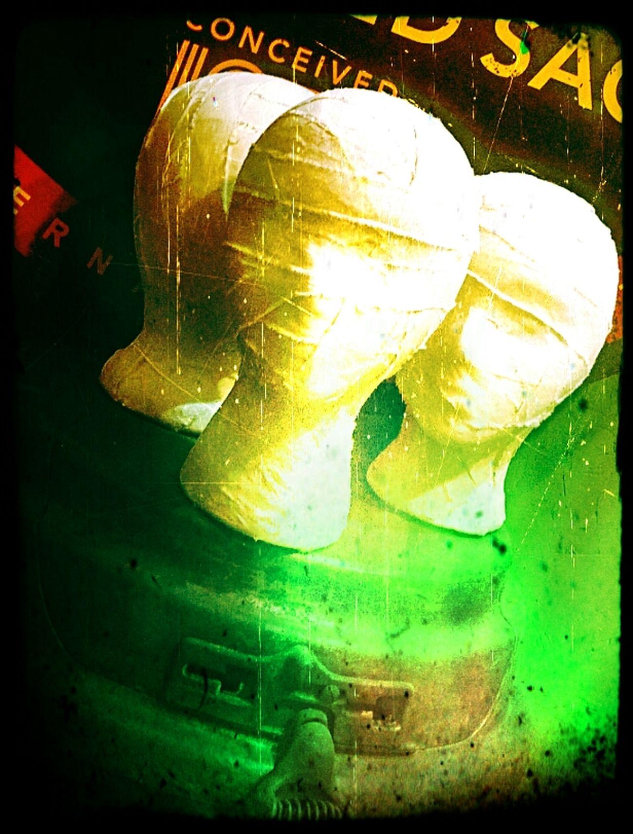 Yellow Green Color Indoors  Close-up Stiffs Headshot