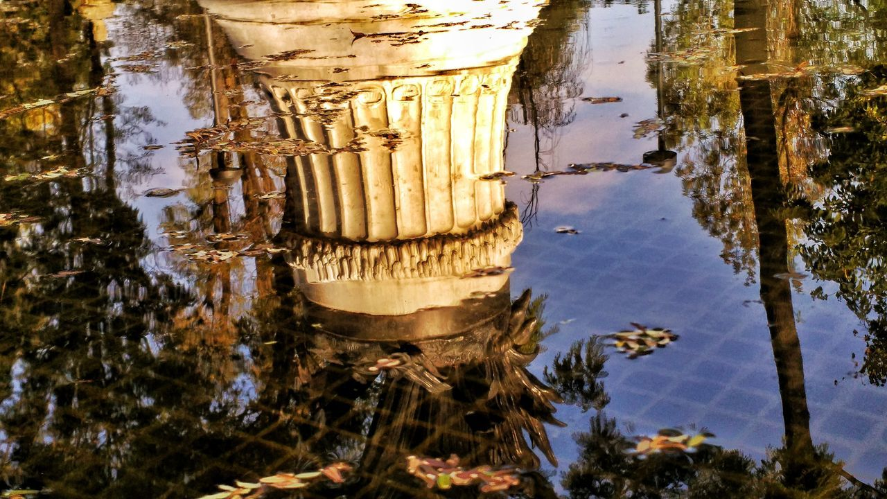 reflection, water, nature, beauty in nature, day, no people, tree, outdoors, close-up