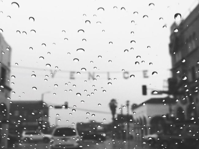 Venice Sign Rain El Niño Black And White It's Cold Outside Showcase: January