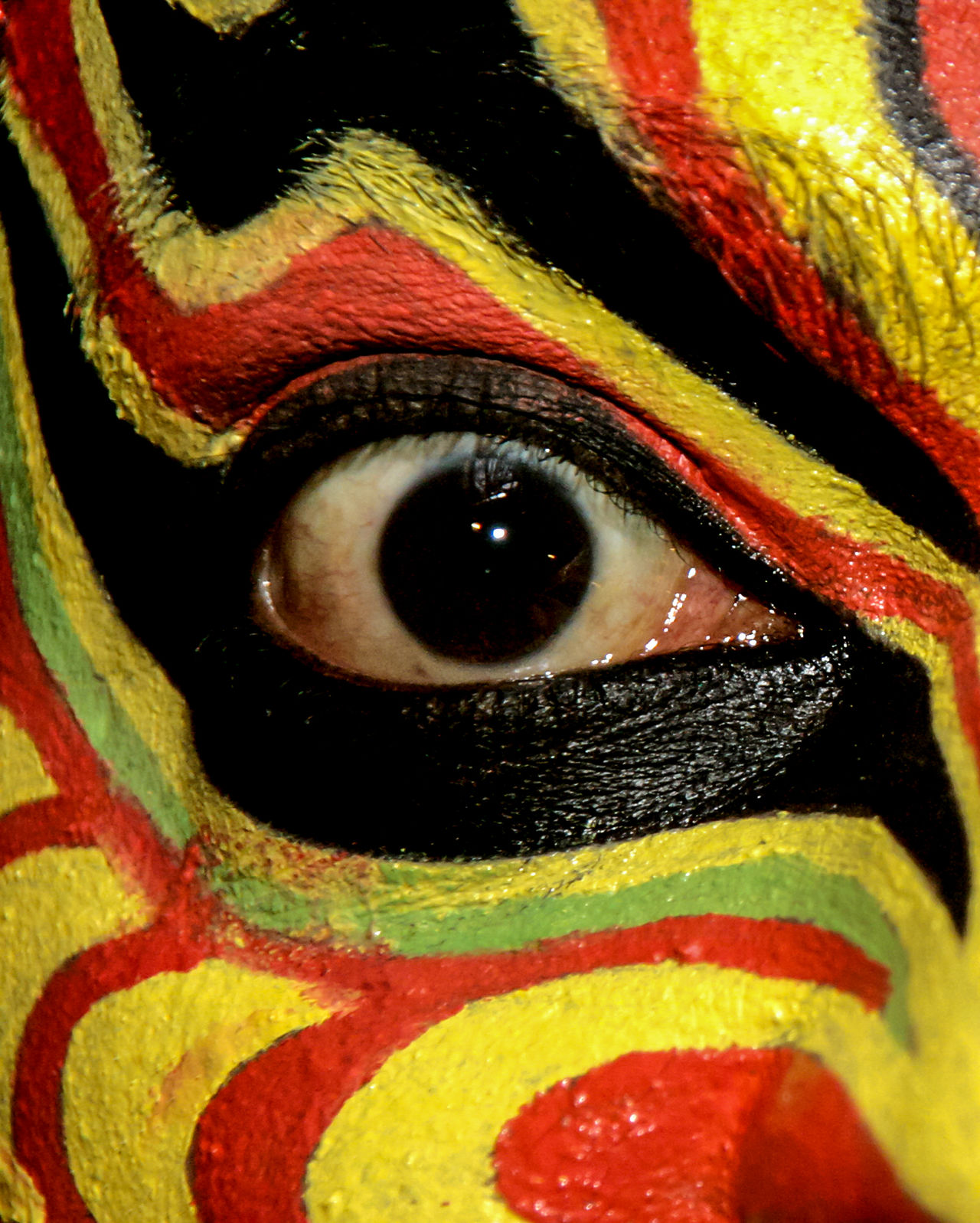 Looking At Camera Multi Colored Yellow Human Eye Close-up Face Paint Portrait Cultures Adult Traditional India Abstract Face Dance Makeup Kathakali Art Artist Artistic Stage Performance Folk Vibrant Color Eye