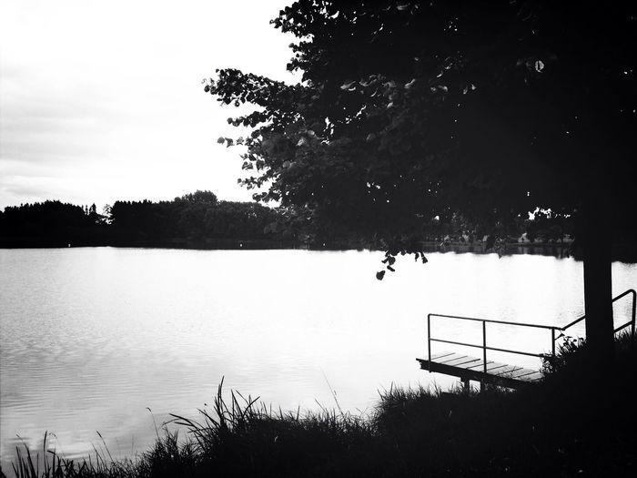 Landscape Black And White Black & White Monochrome