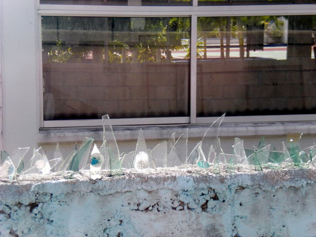 Architecture Building Building Exterior Built Structure Day Deterioration Glass Fragments Nature No People Outdoors Plant Run-down