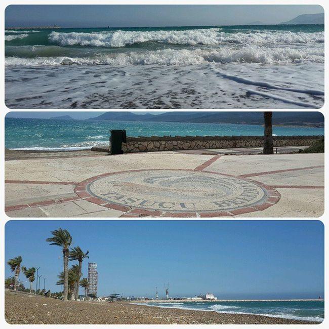 Mersin Tasucu Akdeniz Tasucusahil Hurmaağaçları Liman Denizdenesentuzlumeltem
