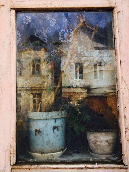 Farytale Flower Magic Green Reflection Houses Dilijan IPhone SE