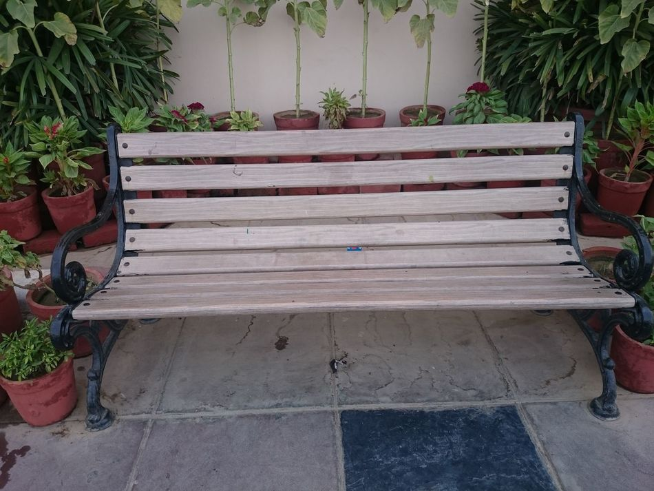 A wooden bench on the outside of a building, with flowers and plants in clay pots on both sides. Bench Bench Surrounded By Plants Clay Plots Flower Flowering Plants Flowers Many Plants Multiple Plants Plants On Both Sides Of Bench Wooden Bench