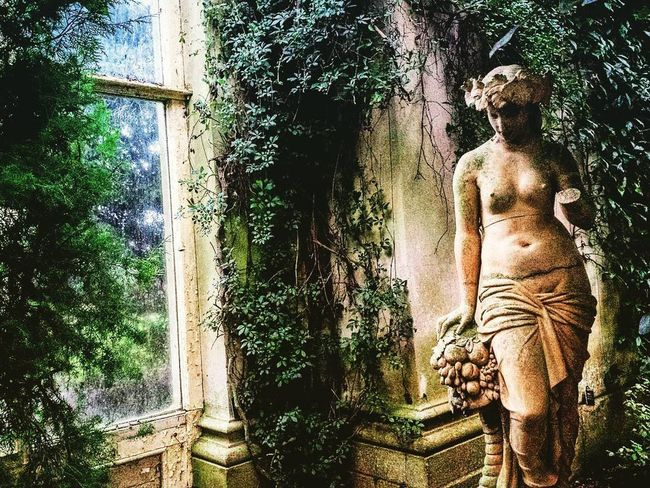 Beautiful Composition Classical Architecture Creativity Orangery Plant Statue Sweet Solitude Window
