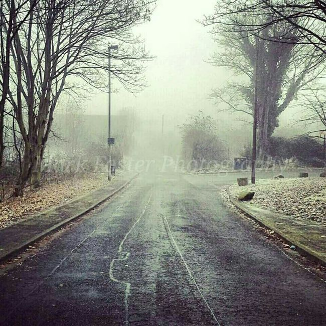 Hanging Out Scary Hello World Fog Midday Autumn Winter Route to my old college