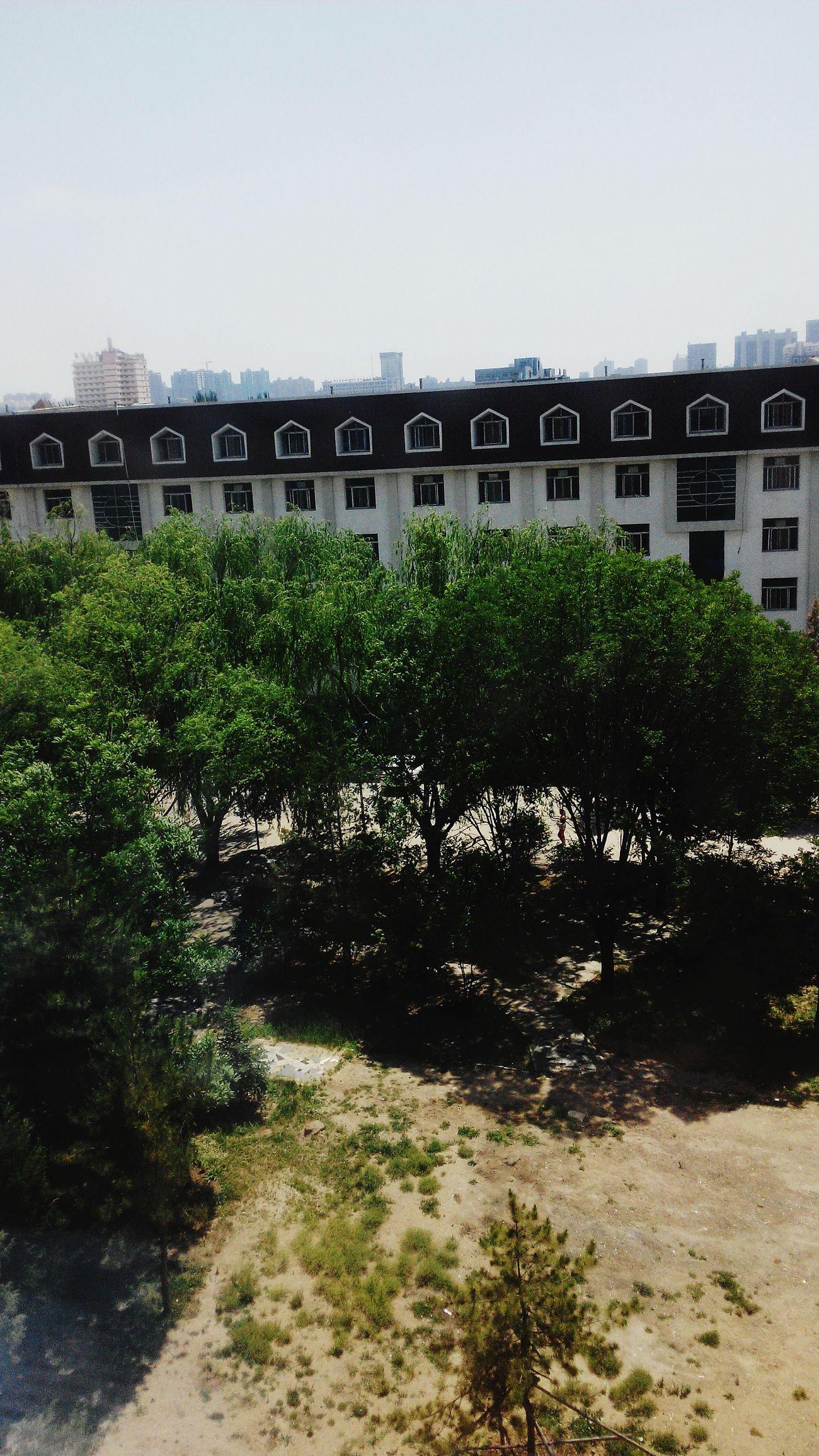 校园 First Eyeem Photo