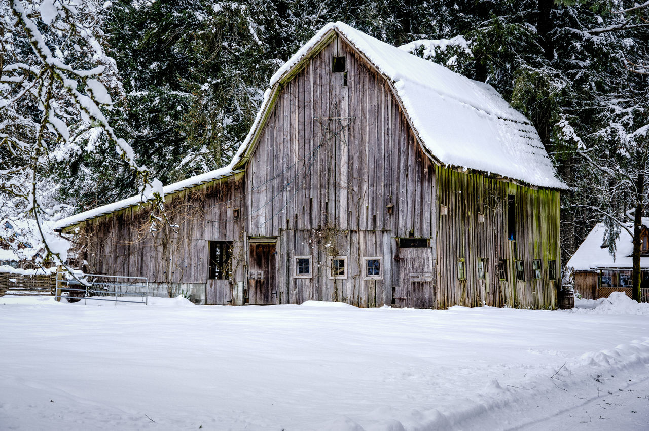 Architecture Barn Beauty In Nature Building Exterior Built Structure Cold Temperature Day Farm Life Frozen Nature No People Outdoors Snow Snowing Tranquil Scene Tree Weather White Color Winter