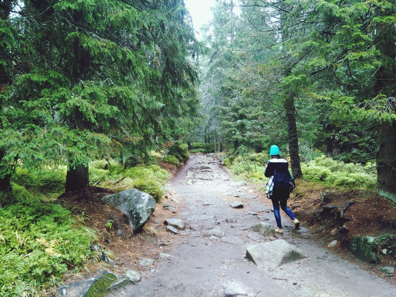 Collectingmoments Feel The Journey Slovakia Tatramountains Hiking Looking For Adventure Mountain_collection