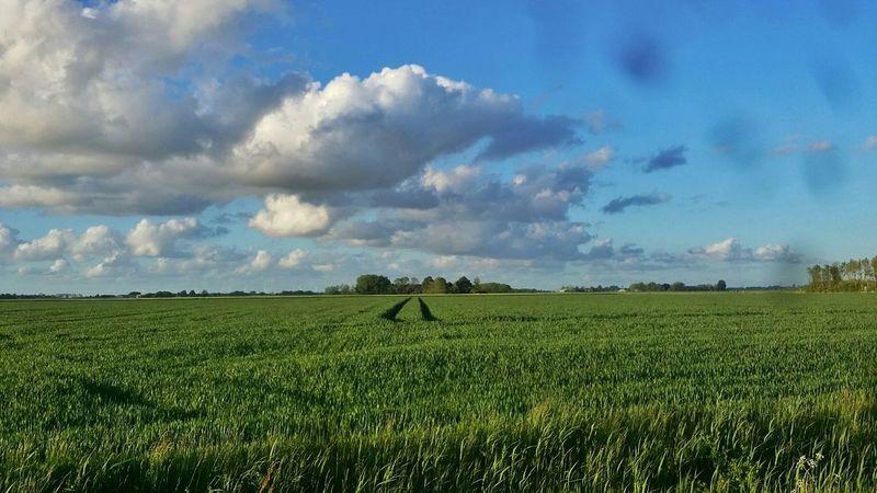 Groningen Farmland Hogeland Clouds And Sky