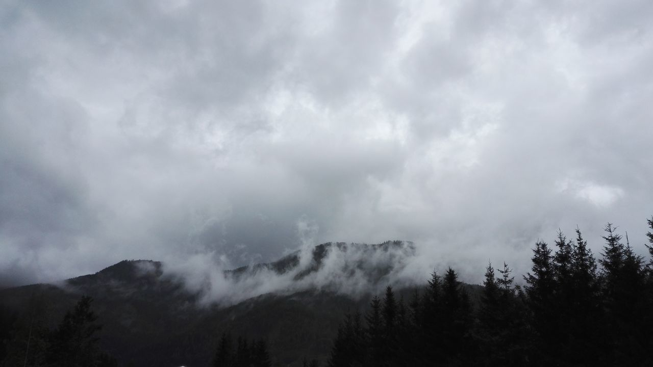 K.O.A Spooky Thunderstorm Nature Forest Dramatic Sky Storm Cloud No People Storm Outdoors Mountain Beauty In Nature Sky Kaltenbach Festival Kaltenbach Open Air Kaltenbach Festival Austria Autriche