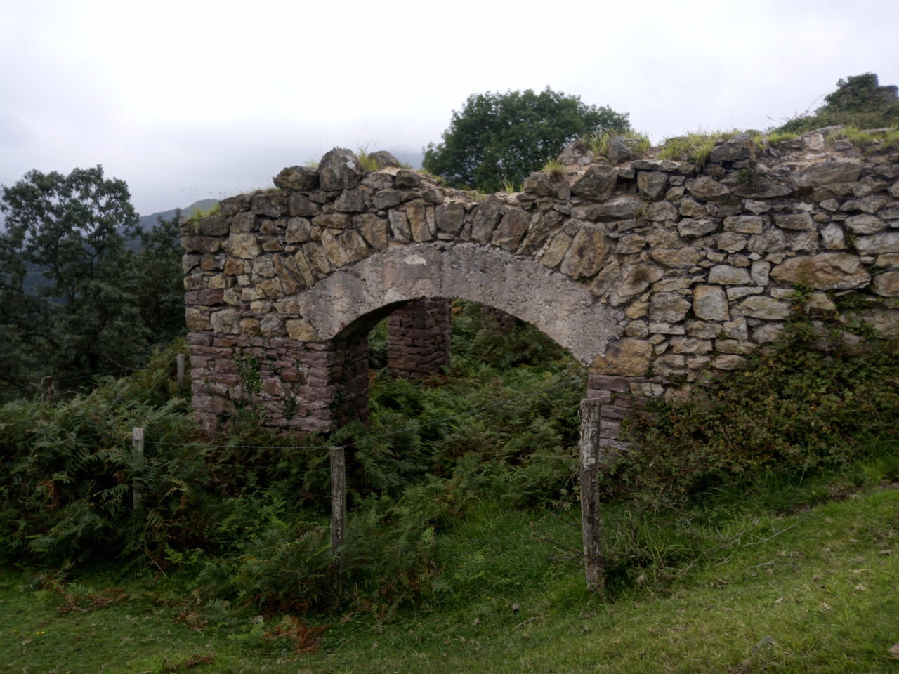 old ruin, history, ancient, architecture, built structure, day, arch, damaged, no people, tree, grass, outdoors, nature, ancient civilization, sky