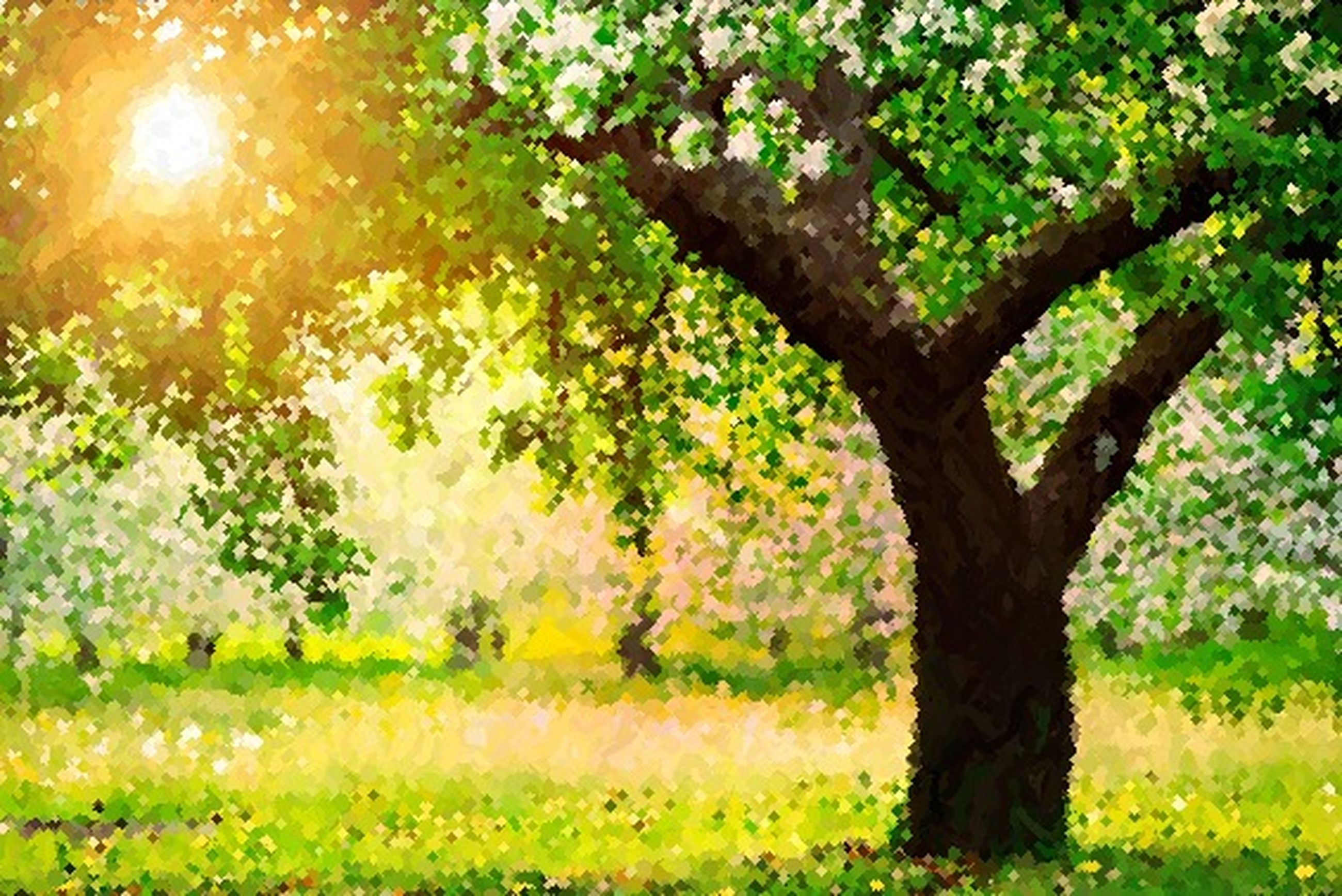 tree, growth, tranquility, nature, green color, beauty in nature, branch, sunlight, grass, tranquil scene, field, scenics, tree trunk, plant, growing, sun, day, outdoors, no people, leaf