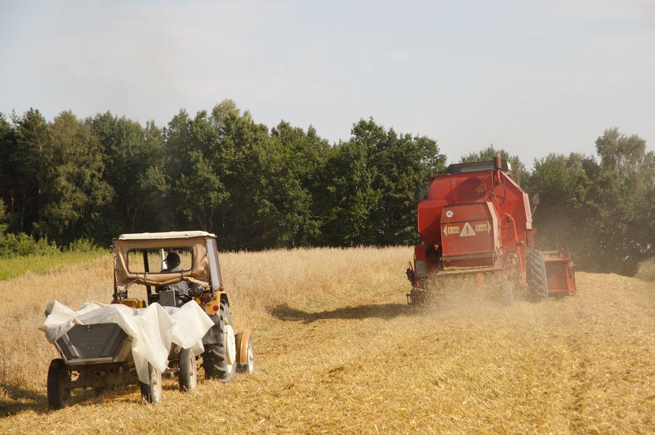 Combine Harvester Agriculture Combine Harvester Poland Tractor Wheat Combine Farming Harvest
