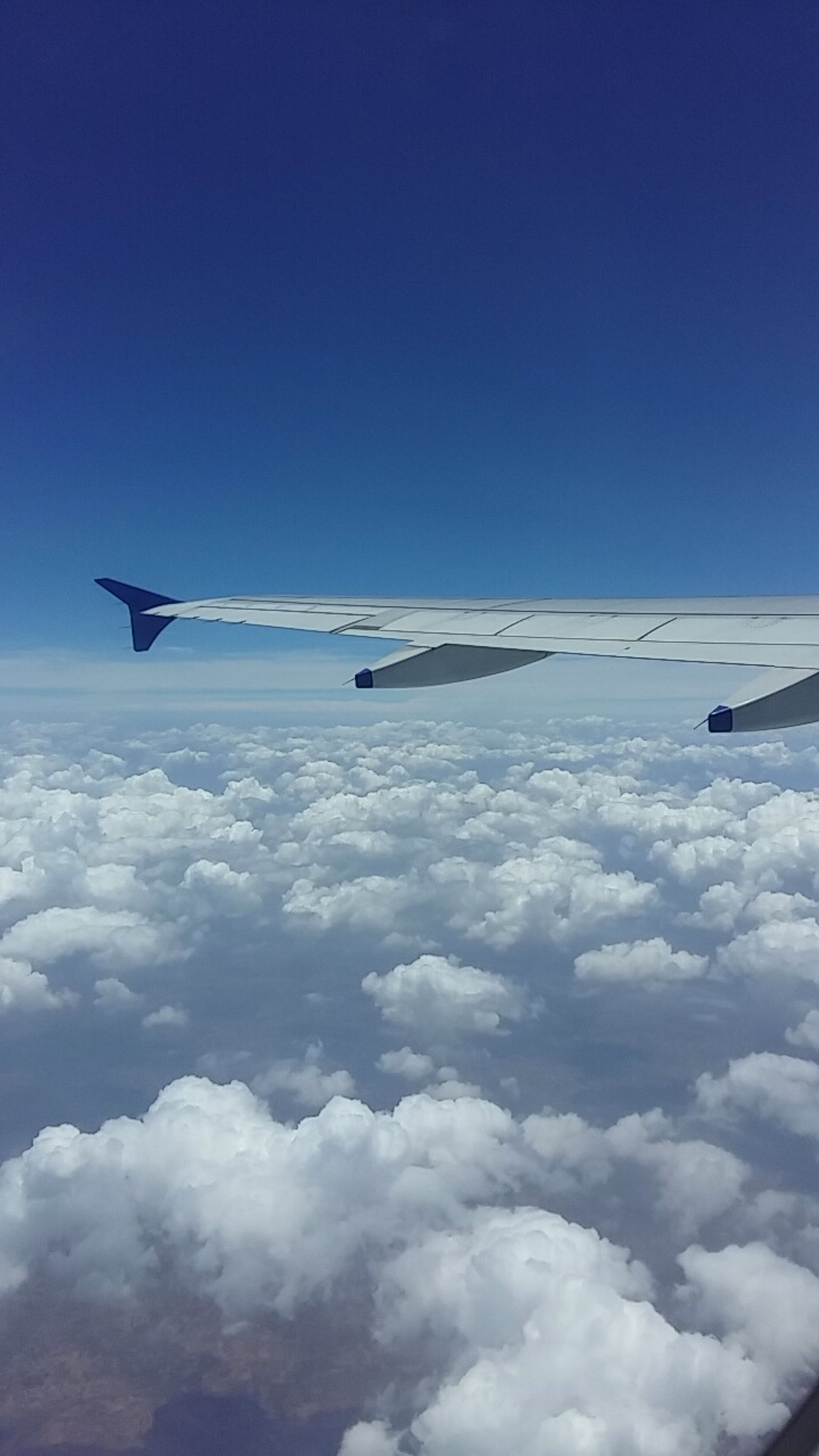 airplane, transportation, air vehicle, mode of transport, flying, aircraft wing, public transportation, blue, journey, sky, mid-air, on the move, travel, part of, scenics, cropped, aircraft, nature, copy space, aeroplane