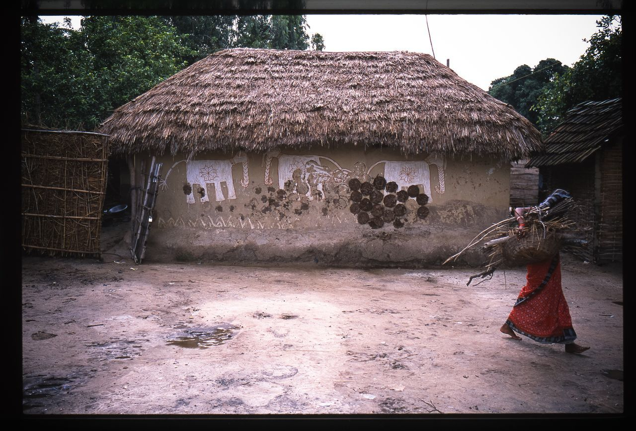 built structure, building exterior, architecture, outdoors, thatched roof, day, house, full length, tree, real people, one animal, one person, animal themes, nature, sky, mammal, people