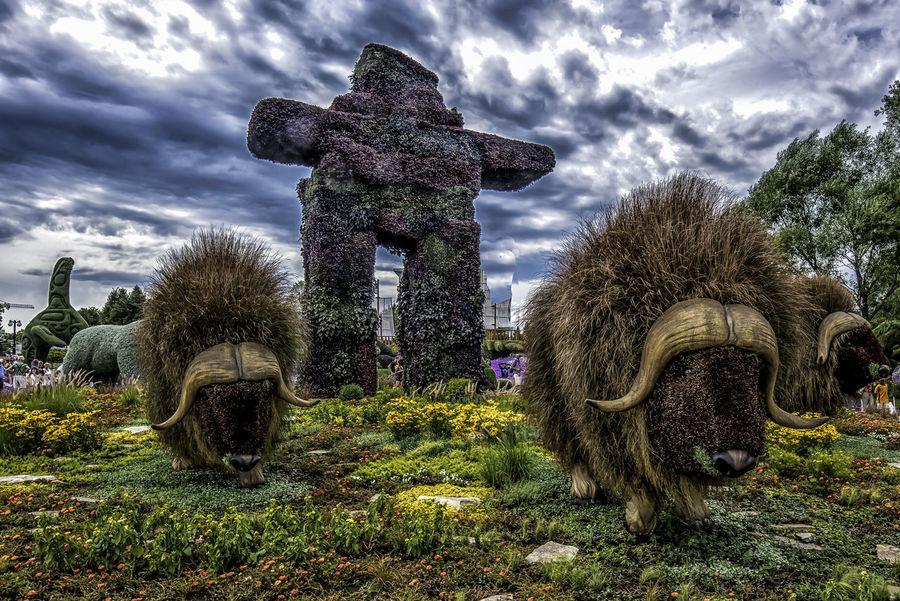 Canada150 Gatineau Inukshuk Musk Ox Ontario Ottawa Quebec Beauty In Nature Canada Cloud - Sky Flowers Mosiac Sculpture Sky Statue