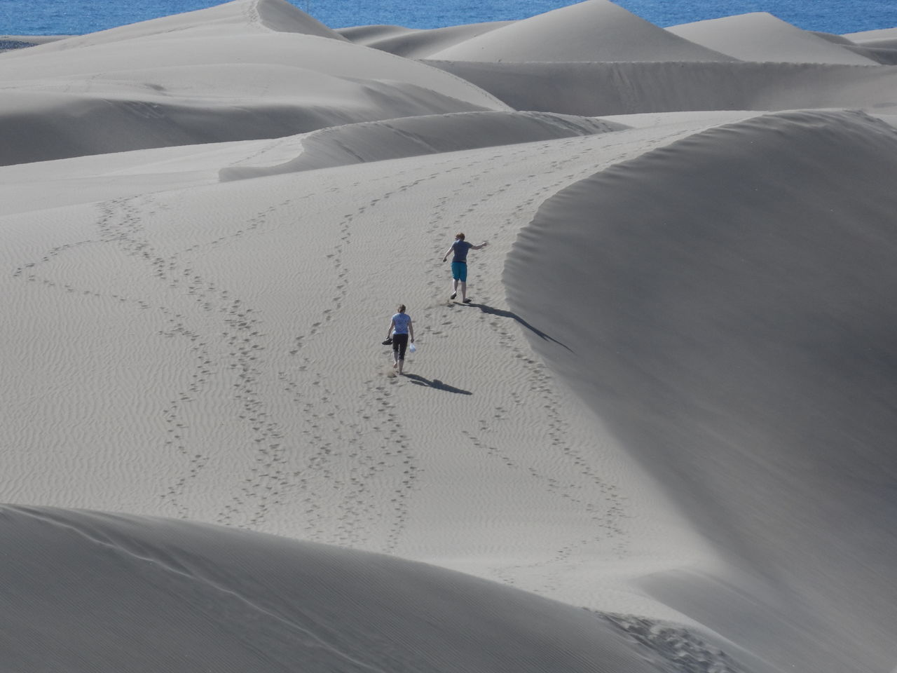 Dune walking Adventure Aerial View Beauty In Nature Canary Islands Desert Landscape Leisure Activity Maspalomas Nature Outdoors Sand Sand Dune Shadow SPAIN Tourist Tranquility Travel Two People Vacations Walking